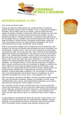 Micróbios úteis: o pão