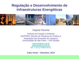 Regulação e Desenvolvimento de Infraestruturas Energéticas