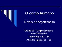 Como se organiza o corpo humano