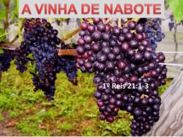 A_VINHA_DE_NABOTE
