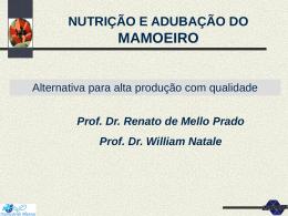 NUTRICAO E ADUBACAO DO MAMOEIRO: alternativa para alta