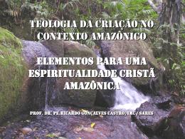 Teologia da Criação no contexto Amazônico Elementos para uma