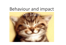 Behaviour and impact on brain :