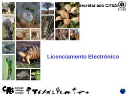 Licenciamento Electrónico