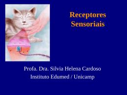 Receptores sensoriais