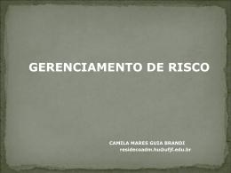 AULA: Gerenciamento de risco por Camila Mares Guia