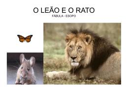SLIDES4_CRISTIANO