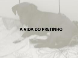 A VIDA DO PRETINHO
