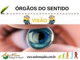 Audição ÓRGÃOS DO SENTIDO www.andremaiabio