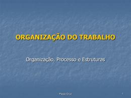 Organização do trabalho, processo e estruturas