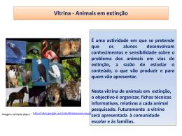 Vitrina – Animais em extinção