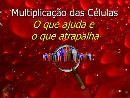 Multiplicação: O que ajuda e o que atrapalha?