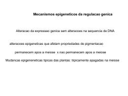 Mecanismos epigeneticos da regulacao genica