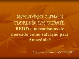 REDD e mecanismos de mercado como salvação para Amazônia?