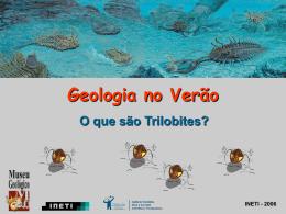O que são Trilobites?