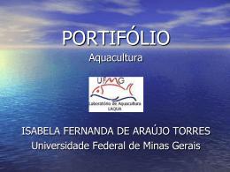 apresentação do portifólio - Universidade Federal de Minas Gerais