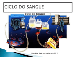 CICLO DO SANGUE - Paulo Roberto Margotto