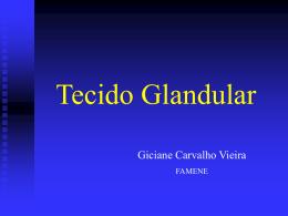 Tecido Glandular Giciane Carvalho Vieira