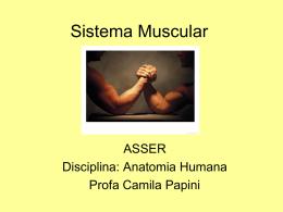 4 - Sistema Muscular - FTP