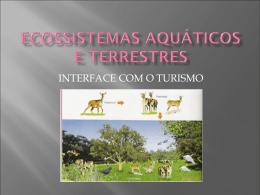 Aula Introdução aos Ecossistemas