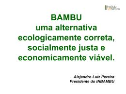 Bambu e as Oportunidades de Econegócios