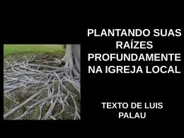 plantando suas raízes na igreja local (luis palau) – powerpoint