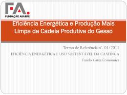 Eficiência Energética e Produção Mais Limpa da Cadeia Produtiva