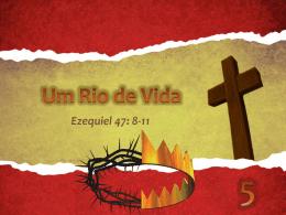 1515 UM RIO DE VIDA 2