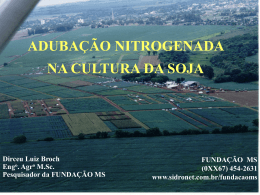 Dirceu Broch - Slides 1 a 25