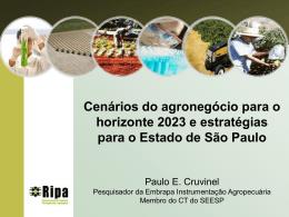 Palestra do Prof. Paulo Cruvinel