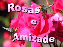 rosas de amizade