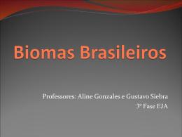 Biomas Brasileiros (3)