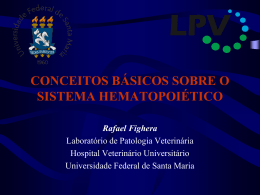 Sistema hematopoético (introdução)