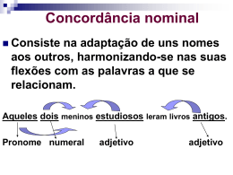 Concordancia_nominal_9_ano