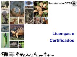Licenças e certificados