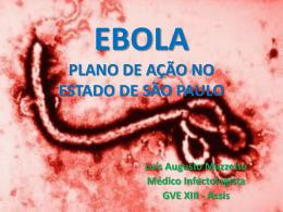 EBOLA PLANO DE AÇÃO NO ESTADO DE SÃO PAULO
