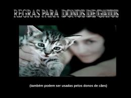 Regras para donos de gatos