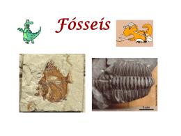 Fósseis - Casa das Ciências