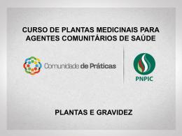 plantas_e_gravidez