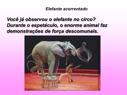 Parabola do Elefante