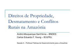Pecuária e Desmatamento na Amazônia