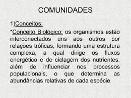 COMUNIDADES aula 4