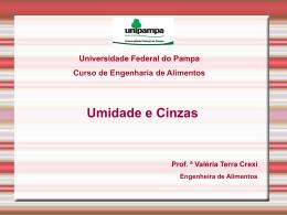 Cinza úmida - Cursos da Unipampa