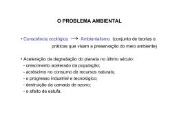 O PROBLEMA AMBIENTAL