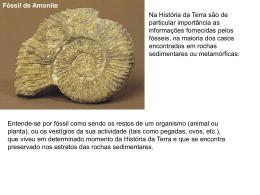 Fósseis (apresentação da aula)