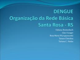 Apresentação Organização da Assintência em Dengue em Santa