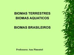 BIOMAS BRASILEIROS - Universidade Castelo Branco