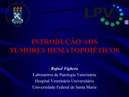 Introdução aos tumores hematopoiéticos