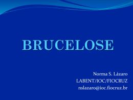 BRUCELOSE - Panaftosa
