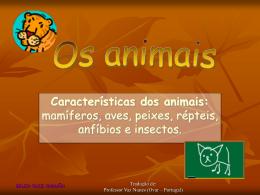 As classes em que se dividem os animais